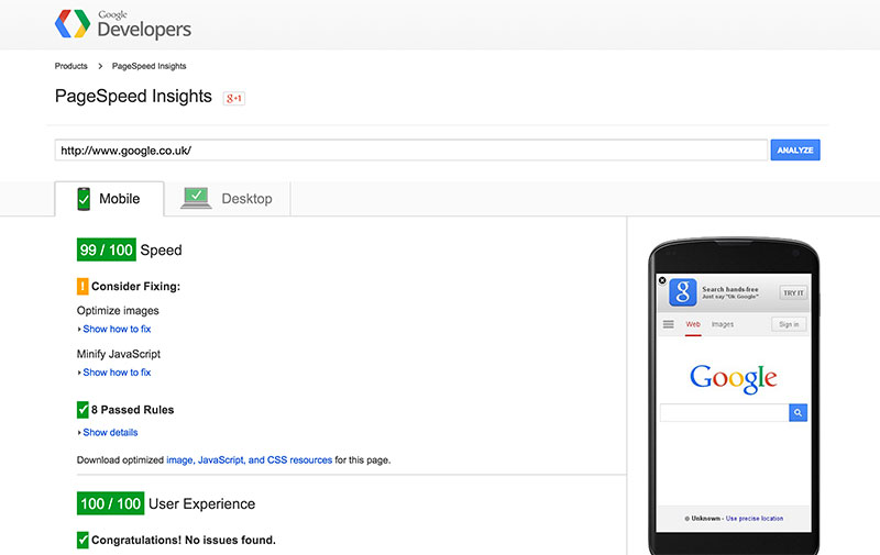 Google's page speed insights screenshot