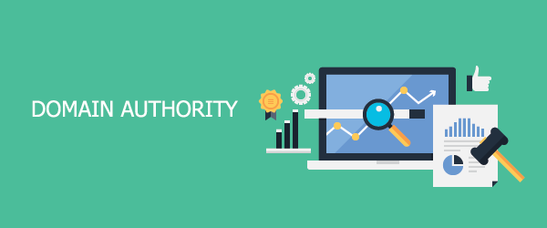 The Importance of Page Authority and Domain Authority